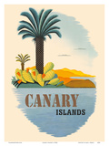 Canary Islands - Palm Trees and Cactus Art by  Pacifica Island Art