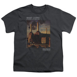 Youth: Pink Floyd- Animals Distressed T-shirts