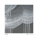 Veil 1 Limited Edition by Lynn Basa