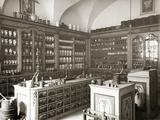Historical Pharmacy Photographic Print by Scherl Süddeutsche Zeitung Photo