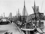 Harbour of Stralsund, 1937 Fotografisk trykk av  Süddeutsche Zeitung Photo