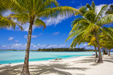 Palm Trees, Lounge Chairs, and White Sand on a Tropical Beach Opspændt lærredstryk af Mike Theiss