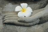 Buddha at Wat Yai Chai Khon Kunst op gespannen canvas van Alison Wright