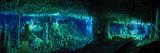 The Cascade Room Leads Divers Deeper Into Dan's Cave on Abaco Island キャンバスプリント : ウェス C.・スカイルス