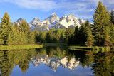 Reflections of the Teton Range in Schwabacher Landing キャンバスプリント : ロビー・ジョージ