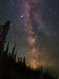 The Summer Milky Way Appears Dazzling over Yellowstone National Park Stretched Canvas Print by Babak Tafreshi