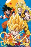 Dragonball Z- Gokus Evo Kunstdrucke