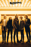 Blossoms- In The Limelight Billeder