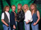 Def Leppard - 15 Months of Rock 1987 キャンバスプリント