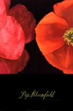 Dual Poppy Left Affiches par Pip Bloomfield