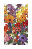 Fresh Floral I Limited Edition by Tim O'toole