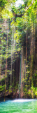 ¡Viva Mexico! Panoramic Collection - Hanging Roots of Ik-Kil Cenote IV Fotografie-Druck von Philippe Hugonnard