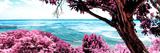 ¡Viva Mexico! Panoramic Collection - Isla Mujeres Coastline IV Fotografisk trykk av Philippe Hugonnard